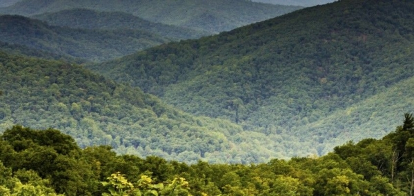 WV Supreme Court: No Pipeline Surveys for Private Gain
