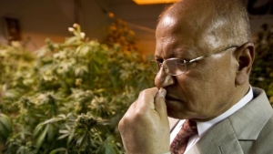 Dr. Mahmoud ElSohly has run the federal government's Marijuana Research Project at the University of Mississippi since 1980.